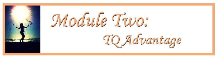 Module Two: TQ Advantage